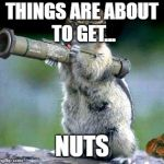 Bazooka Squirrel Meme | THINGS ARE ABOUT TO GET... NUTS | image tagged in memes,bazooka squirrel | made w/ Imgflip meme maker