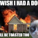 Burn Kitty Meme | I WISH I HAD A DOG HE WILL BE TOASTED TOO | image tagged in memes,burn kitty,grumpy cat | made w/ Imgflip meme maker