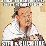 Wise Confucius | A SINGLE TREE MAKES NO FOREST; ONE STRING MAKES NO MUSIC STFU & CLICK LIKE | image tagged in wise confucius | made w/ Imgflip meme maker
