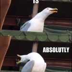 Inhaling Seagull Meme | THAT IS ABSOLUTLY WRONG | image tagged in memes,inhaling seagull | made w/ Imgflip meme maker