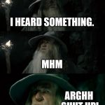 Confused Gandalf Meme | I HEARD SOMETHING. MHM ARGHH SHUT UP! | image tagged in memes,confused gandalf | made w/ Imgflip meme maker