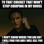 Liam Neeson Taken Meme | TO THAT CRICKET THAT WON'T STOP CHIRPING IN MY HOUSE I DON'T KNOW WHERE YOU ARE BUT I WILL FIND YOU AND I WILL KILL YOU | image tagged in memes,liam neeson taken | made w/ Imgflip meme maker