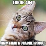 Random Cat | ERROR 404 JIMMY HAD A CRACKER? MOO! | image tagged in random cat | made w/ Imgflip meme maker