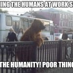 City Bear Meme | WATCHING THE HUMANS AT WORK SECTION OH THE HUMANITY! POOR THINGS... | image tagged in memes,city bear | made w/ Imgflip meme maker