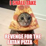 pizza cat | I SHALL TAKE REVENGE FOR THE EATAN PIZZA  | image tagged in pizza cat | made w/ Imgflip meme maker