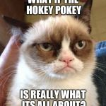 Grumpy Cat Reverse Meme | WHAT IF THE HOKEY POKEY IS REALLY WHAT ITS ALL ABOUT? | image tagged in memes,grumpy cat reverse,grumpy cat | made w/ Imgflip meme maker
