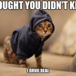 Hoody Cat Meme | I THOUGHT YOU DIDN'T KNOW I DRUG DEAL | image tagged in memes,hoody cat | made w/ Imgflip meme maker