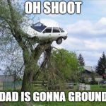 "son drives his dad""s car up a tree 