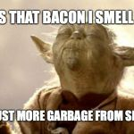 yoda smell | IS THAT BACON I SMELL OR JUST MORE GARBAGE FROM SPACE? | image tagged in yoda smell | made w/ Imgflip meme maker