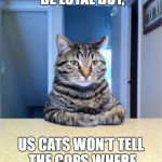 Take A Seat Cat Meme | SURE, DOGS CAN BE LOYAL BUT, US CATS WON'T TELL THE COPS WHERE YOU KEEP THE DRUGS | image tagged in memes,take a seat cat,random | made w/ Imgflip meme maker