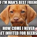 Frustrated dog | IF I'M MAN'S BEST FRIEND HOW COME I NEVER GET INVITED FOR BEERS? | image tagged in frustrated dog | made w/ Imgflip meme maker