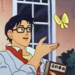 ANIME BUTTERFLY MEME