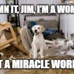 messy dog | DAMN IT, JIM, I'M A WOMAN NOT A MIRACLE WORKER | image tagged in messy dog | made w/ Imgflip meme maker