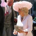 Ossie Ostrich Wants His Feathers Back Camilla meme