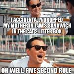Leonardo Dicaprio Wolf Of Wall Street Meme | I ACCIDENTALLY DROPPED MY MOTHER IN LAW'S SANDWICH IN THE CAT'S LITTER BOX OH WELL. FIVE SECOND RULE | image tagged in memes,leonardo dicaprio wolf of wall street | made w/ Imgflip meme maker