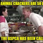 Angry Chef Gordon Ramsay Meme | THESE ANIMAL CRACKERS ARE SO BURNT THAT THE ASPCA HAS BEEN CALLING | image tagged in memes,angry chef gordon ramsay | made w/ Imgflip meme maker