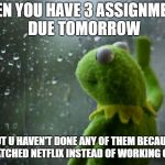 kermit window | WHEN YOU HAVE 3 ASSIGNMENTS DUE TOMORROW BUT U HAVEN'T DONE ANY OF THEM BECAUSE YOU WATCHED NETFLIX INSTEAD OF WORKING ON THEM | image tagged in kermit window | made w/ Imgflip meme maker