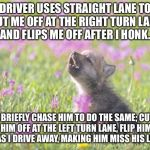Baby Insanity Wolf Meme | DRIVER USES STRAIGHT LANE TO CUT ME OFF AT THE RIGHT TURN LANE, AND FLIPS ME OFF AFTER I HONK. I BRIEFLY CHASE HIM TO DO THE SAME; CUT HIM O | image tagged in memes,baby insanity wolf,AdviceAnimals | made w/ Imgflip meme maker