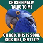 Paranoid Parrot Meme | CRUSH FINALLY TALKS TO ME OH GOD, THIS IS SOME SICK JOKE, ISN'T IT!? | image tagged in memes,paranoid parrot | made w/ Imgflip meme maker