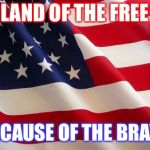 American flag | LAND OF THE FREE BECAUSE OF THE BRAVE | image tagged in american flag | made w/ Imgflip meme maker