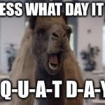 Hump Day Camel | GUESS WHAT DAY IT IS! S-Q-U-A-T D-A-Y!! | image tagged in hump day camel | made w/ Imgflip meme maker