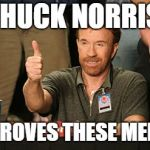 Chuck Norris Approves Meme | CHUCK NORRIS APPROVES THESE MEMES | image tagged in memes,chuck norris approves,chuck norris | made w/ Imgflip meme maker