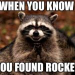 Evil Plotting Raccoon Meme | WHEN YOU KNOW YOU FOUND ROCKET | image tagged in memes,evil plotting raccoon | made w/ Imgflip meme maker