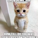 Cute Cat Meme | EXCUSE ME SIR HOW TALL DO YOU HAVE TO BE TO GET ON THIS RIDE? | image tagged in memes,cute cat | made w/ Imgflip meme maker