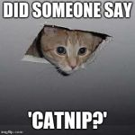 Ceiling Cat Meme | DID SOMEONE SAY 'CATNIP?' | image tagged in memes,ceiling cat | made w/ Imgflip meme maker