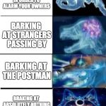 Expanding Brain Meme | BARKING AT ACTUAL INTRUDERS IN ORDER TO ALARM YOUR OWNERS BARKING AT STRANGERS PASSING BY BARKING AT THE POSTMAN BRAKING AT ABSOLUTELY NOTHI | image tagged in memes,expanding brain,doge,dogs,barking | made w/ Imgflip meme maker