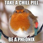 Bah Humbug Meme | TAKE A CHILL PILL BE A PHEONIX | image tagged in memes,bah humbug | made w/ Imgflip meme maker
