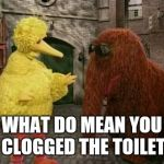 Took a healthy one | WHAT DO MEAN YOU CLOGGED THE TOILET | image tagged in memes,big bird and snuffy | made w/ Imgflip meme maker