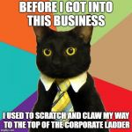Business Cat Meme | BEFORE I GOT INTO THIS BUSINESS I USED TO SCRATCH AND CLAW MY WAY TO THE TOP OF THE CORPORATE LADDER | image tagged in memes,business cat,funny,joke | made w/ Imgflip meme maker