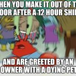 Mr Krabs Blur Meme Meme | WHEN YOU MAKE IT OUT OF THE DOOR AFTER A 12 HOUR SHIFT AND ARE GREETED BY AN OWNER WITH A DYING PET | image tagged in memes,mr krabs blur meme | made w/ Imgflip meme maker