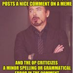 Face You Make Robert Downey Jr Meme | THE FACE I MAKE WHEN SOMEONE POSTS A NICE COMMENT ON A MEME AND THE OP CRITICIZES A MINOR SPELLING OR GRAMMATICAL ERROR IN THE COMMENT | image tagged in memes,face you make robert downey jr | made w/ Imgflip meme maker