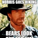 Chuck Norris Meme | WHENEVER CHUCK NORRIS GOES HIKING BEARS LOOK OUT FOR HIM | image tagged in memes,chuck norris | made w/ Imgflip meme maker