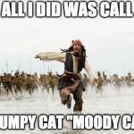 "Jack Sparrow Being Chased Meme | ALL I DID WAS CALL GRUMPY CAT ""MOODY CAT"" 