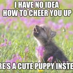 Baby Insanity Wolf Meme | I HAVE NO IDEA HOW TO CHEER YOU UP HERE'S A CUTE PUPPY INSTEAD | image tagged in memes,baby insanity wolf | made w/ Imgflip meme maker