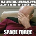 Captain Picard Facepalm Meme | WE,VE HAD STAR TREK, STAR WARS,GUARDIANS OF THE GALAXY BUT ALL THEY COULD THINK OF WAS SPACE FORCE | image tagged in memes,captain picard facepalm | made w/ Imgflip meme maker