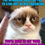 Trashy Memes | THE NEIGHBOR SAID FOR YOU TO STAY OUT OF HIS TRASHCAN YOU'LL HAVE TO GET YOUR MEME IDEAS SOMEWHERE ELSE | image tagged in memes,grumpy cat reverse,grumpy cat,trash | made w/ Imgflip meme maker