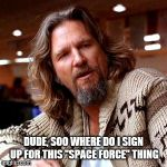 "Confused Lebowski Meme | DUDE, SOO WHERE DO I SIGN UP FOR THIS ""SPACE FORCE"" THING 