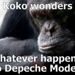 "While I've been trying to live down my Sade Phase, Koko had no pretentions about her musical taste... | Koko wonders ""whatever happened to Depeche Mode?"" 