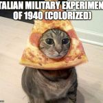 pizza cat | ITALIAN MILITARY EXPERIMENT OF 1940 (COLORIZED) | image tagged in pizza cat | made w/ Imgflip meme maker