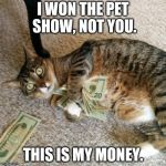 money cat | I WON THE PET SHOW, NOT YOU. THIS IS MY MONEY. | image tagged in money cat | made w/ Imgflip meme maker