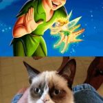 Grumpy Cat Does Not Believe Meme | DO YOU WANT TO GO TO NEVER LAND GRUMPY CAT HOW ABOUT I'LL TAKE YOU TO A LAKE AND ALWAYS LET GO OF YOUR HAND | image tagged in memes,grumpy cat does not believe,grumpy cat | made w/ Imgflip meme maker