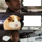The Rock and Hammy meme