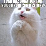 Please? | I CAN HAZ DONATION FOR 20,000 POINTS MILESTONE? | image tagged in begging cat,points,milestone,donation | made w/ Imgflip meme maker