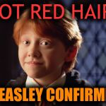 Ron Weasley | GOT RED HAIR? WEASLEY CONFIRMED | image tagged in ron weasley | made w/ Imgflip meme maker