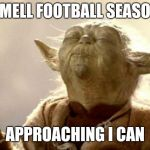yoda smell | SMELL FOOTBALL SEASON APPROACHING I CAN | image tagged in yoda smell | made w/ Imgflip meme maker