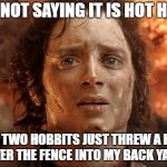 Its Finally Over Meme | I'M NOT SAYING IT IS HOT HERE BUT TWO HOBBITS JUST THREW A RING OVER THE FENCE INTO MY BACK YARD | image tagged in memes,its finally over | made w/ Imgflip meme maker